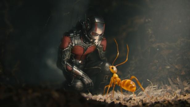 No small marvel ...