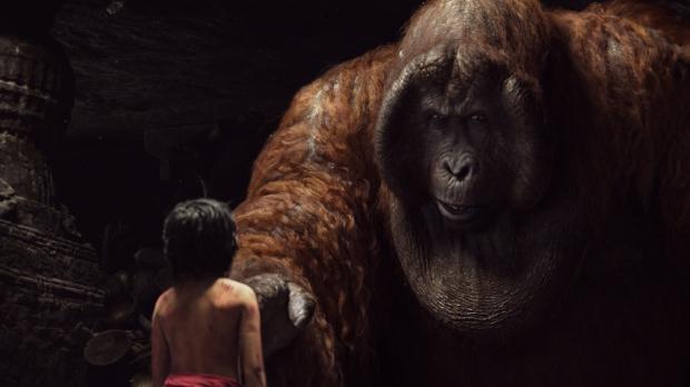 'Stop monkeyin' around, kid!'